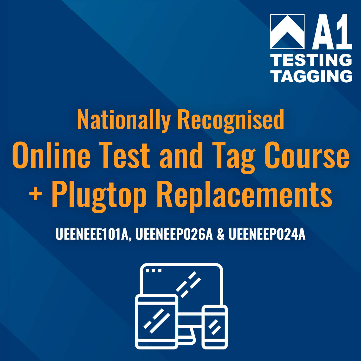 Online Test and Tag Course + Fit Plugs and Sockets